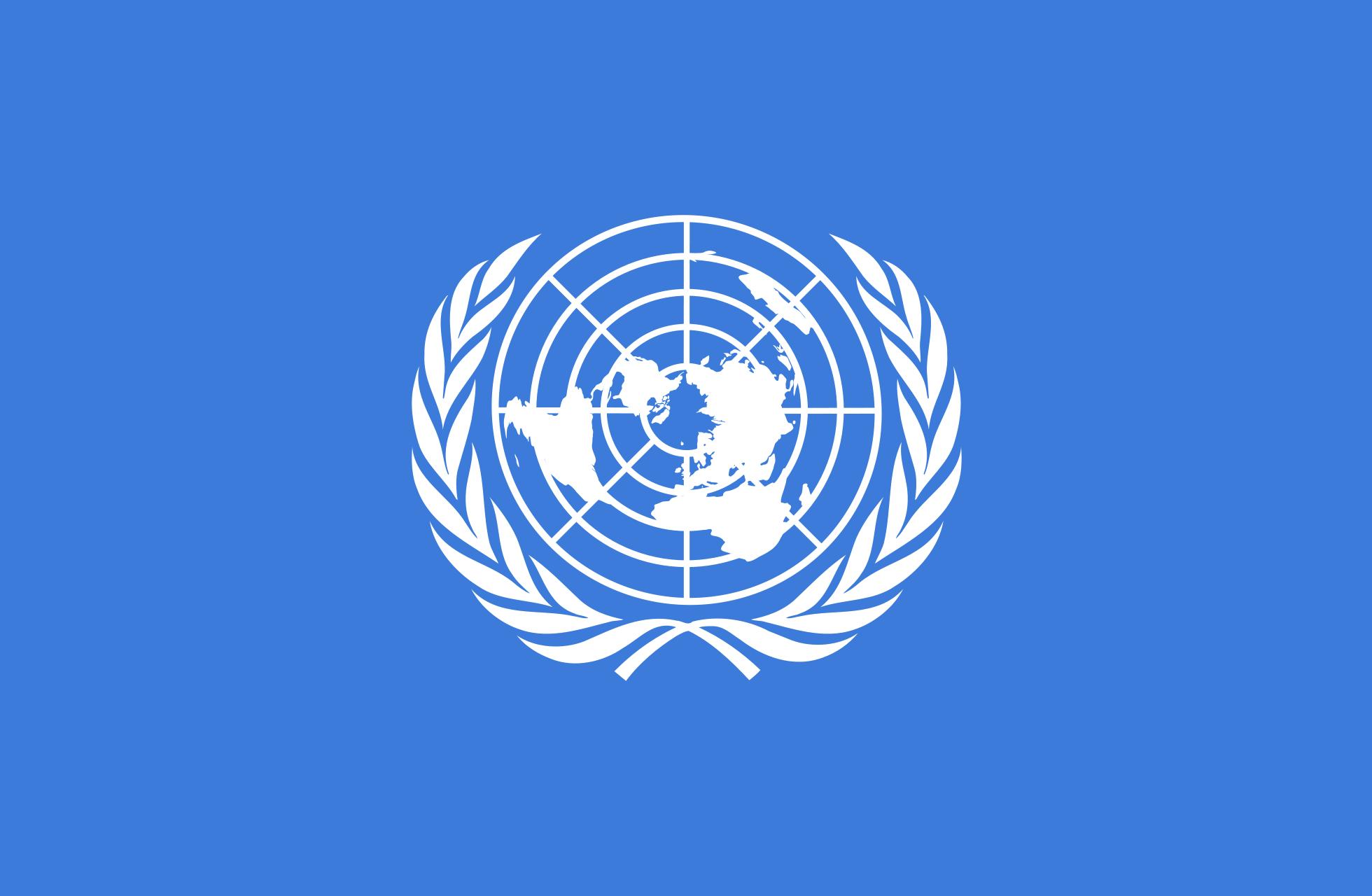 UN erwägt eine verpflichtende Registrierung – für alle Drohnen!