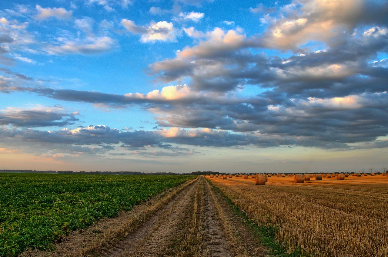 drohnen landwirtschaft